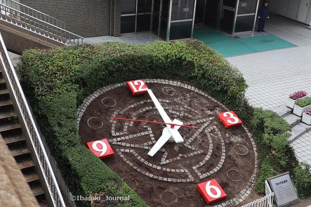 花時計植える準備ができたIMG_7668