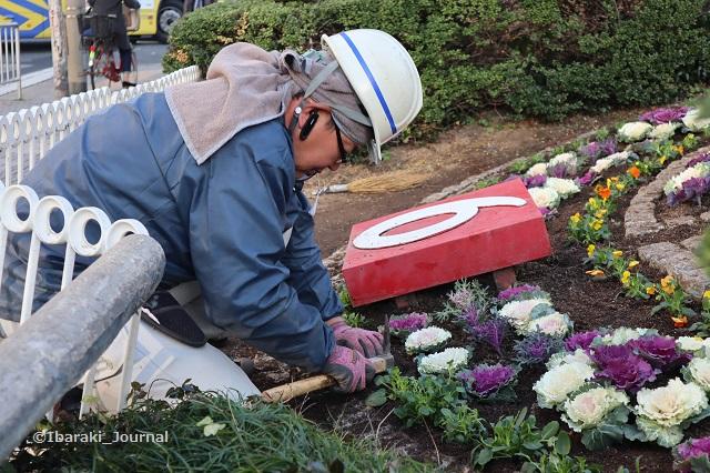 花時計を植える坂田さんIMG_7742