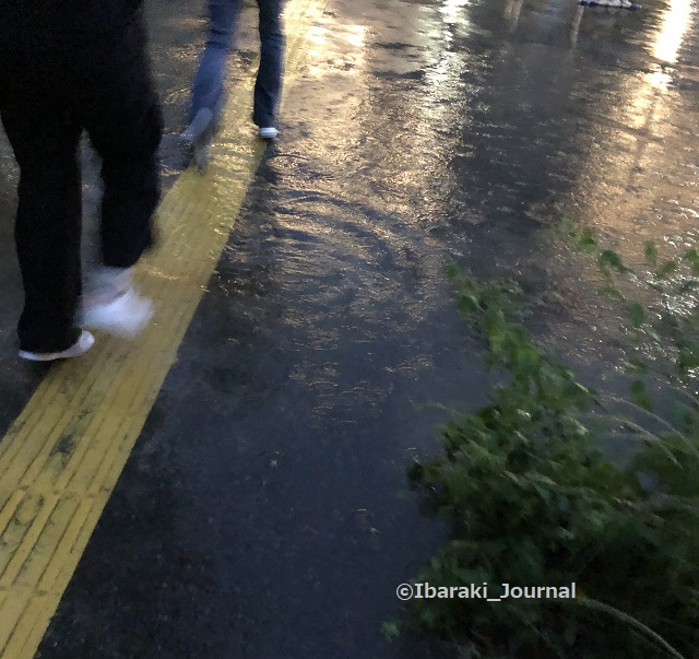20210902パナスタ雨の地面20210922114339