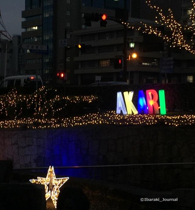 イルミ元茨木川緑地IMG_6145