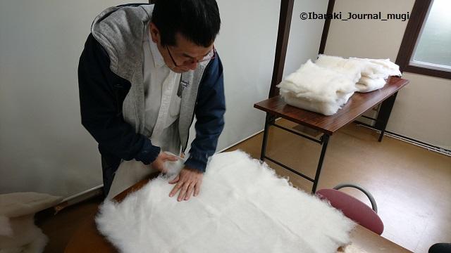 まちゼミスヌーズタイムで綿を整える54514787_1357468817725183_1765405053859921920_n
