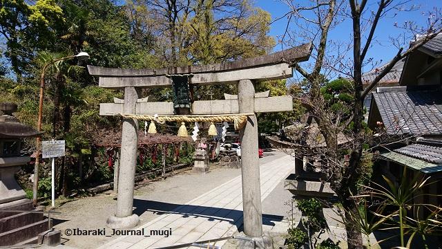 茨木神社鳥居あたり