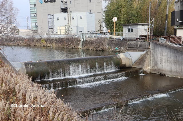 ぼろ塚そばの川IMG_8912