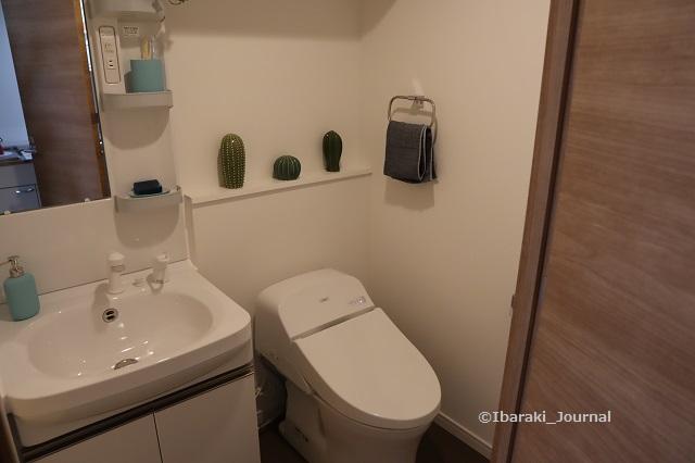 ターミナルズトイレと洗面IMG_9901