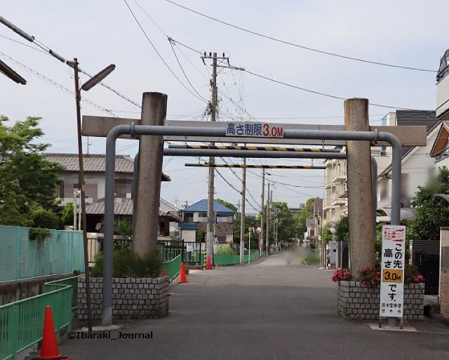 kk2019年6月佐奈部神社の鳥居の南側からIMG_0014