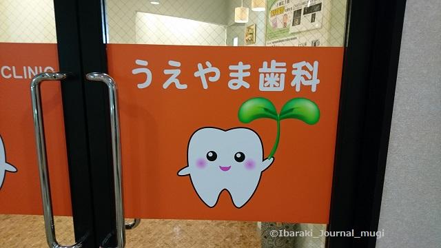 うえやま歯科のとびら