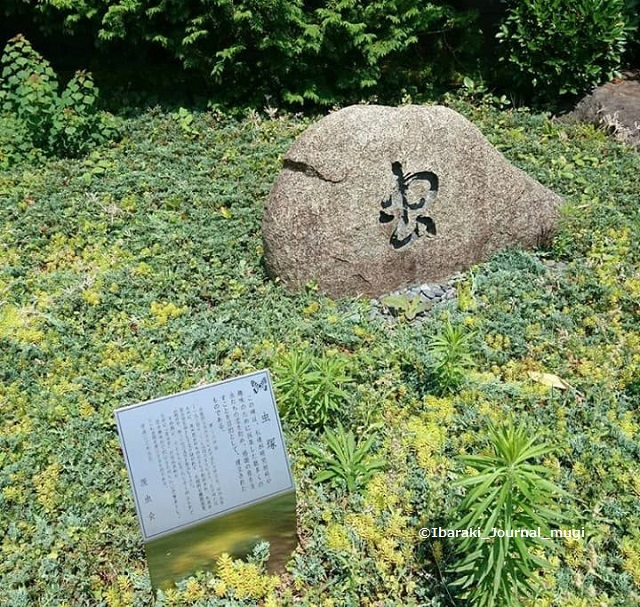 茨木高校の虫塚