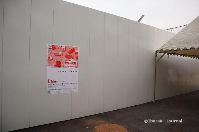 5月のハブイバラキ突然の風景壁面IMG_9865