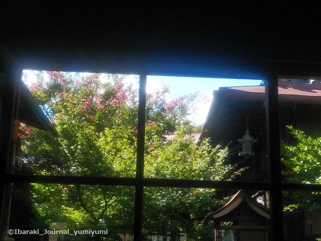 川本本店窓からの景色20190906140315_p