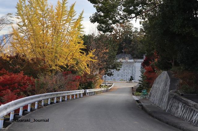 大門寺前の道路上から見るIMG_1326