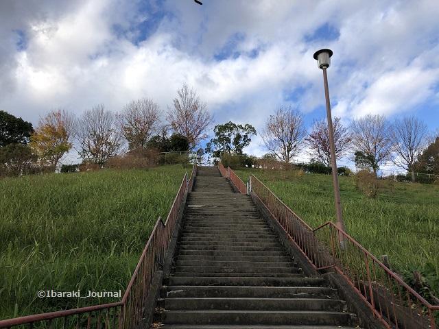 山手台中央公園を見上げるIMG_0716