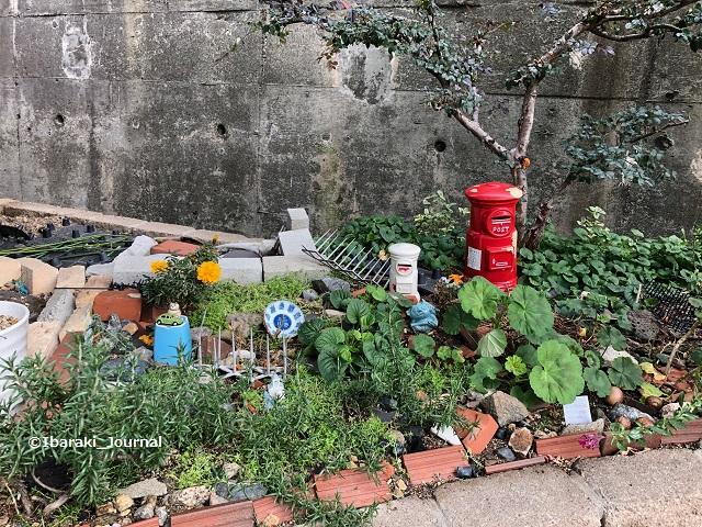 20200106春日商店街入り口の花壇IMG_1345