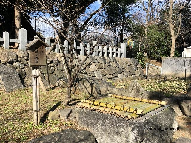 0128茨木神社黒いの清水IMG_1656