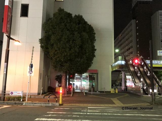 三菱UFJ銀行前の木20200105kkIMG_1331