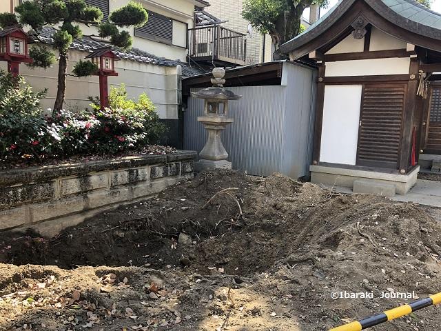 0128茨木神社木が植えられていたところIMG_1644