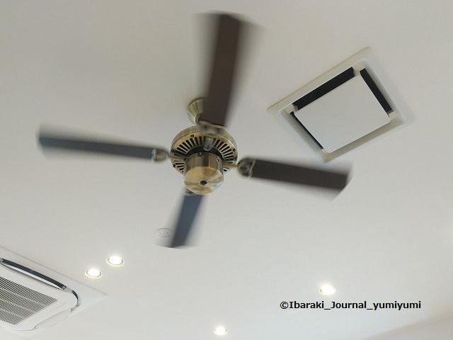 202001吉野家天井のファン