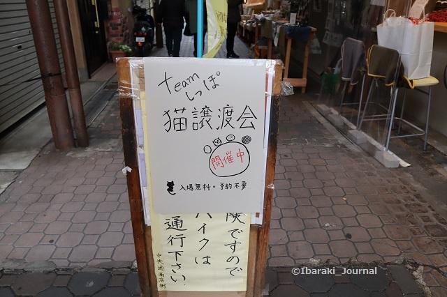 猫チームしっぽ譲渡会案安内IMG_1755