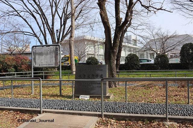 20200207元茨木川緑地健康歩道IMG_1811