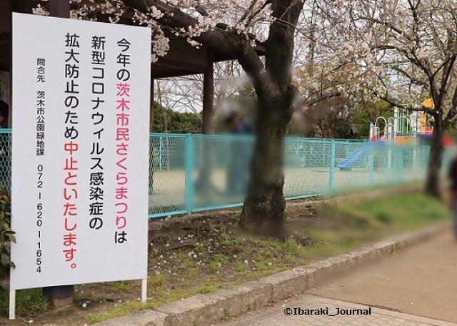 元茨木川緑地お知らせ看板IMG_30370402