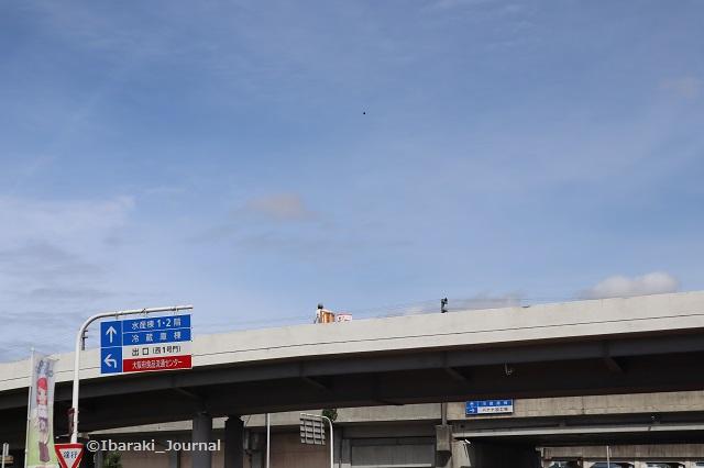 大坂府中央卸売市場ターレ走ってるIMG_3043