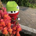 にんじゃる花のそばでIMG_3448