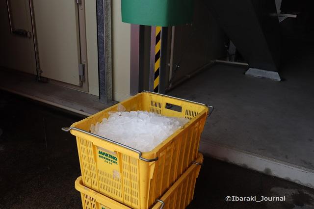 2アイスマンに氷IMG_3076