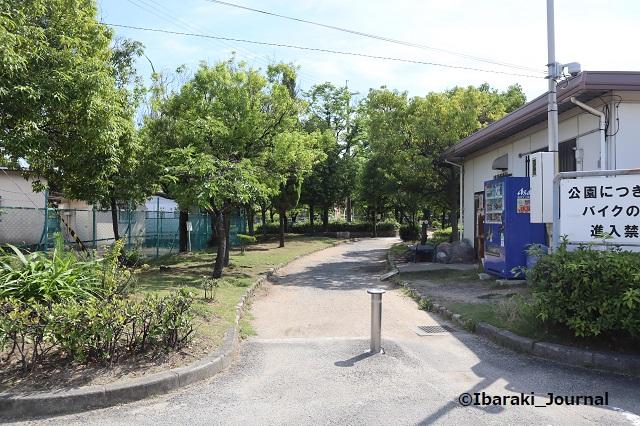 0702高浜スポーツ公園そば1IMG_3715