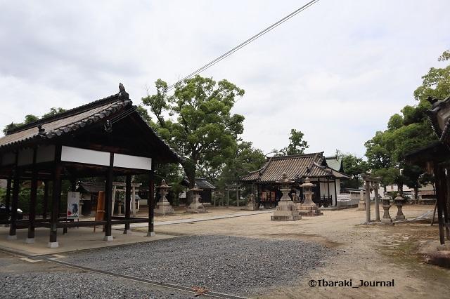 0620井於神社の境内IMG_3466