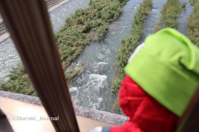 0716安威川を覗くにんジャルIMG_3817
