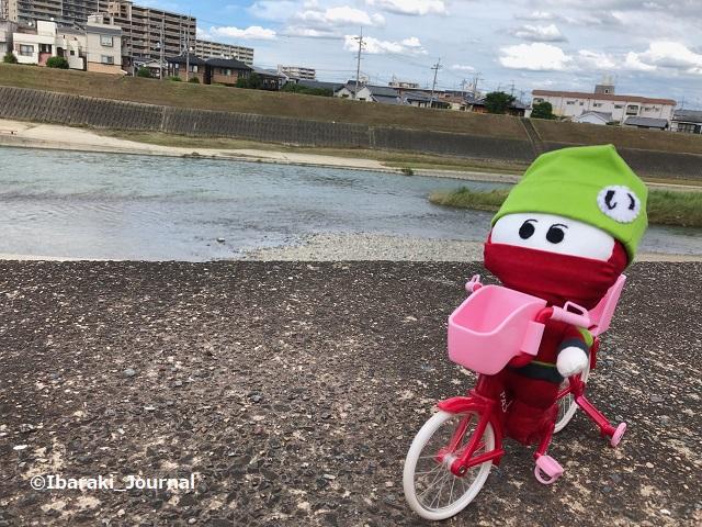 0716にんじゃる自転車に乗って安威川IMG_5187