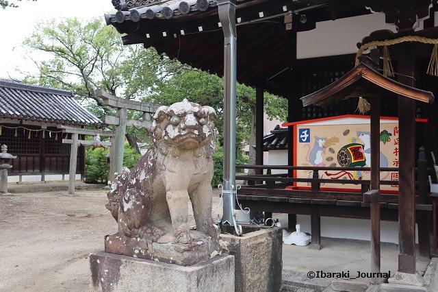 0620井於神社の狛犬IMG_3480