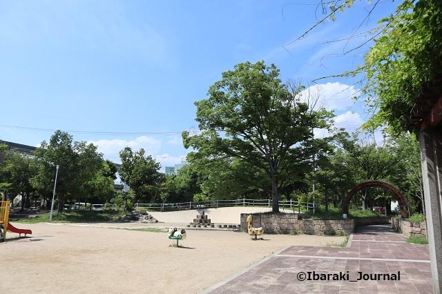 0624沢良宜公園2IMG_3594