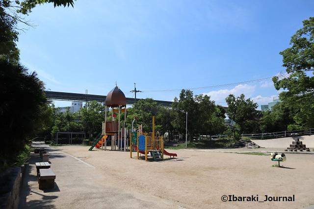 沢良宜公園IMG_3593