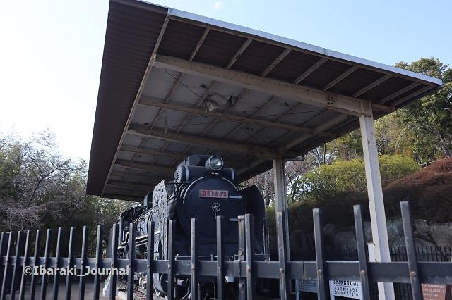 真龍寺の機関車を柵越しにIMG_2205