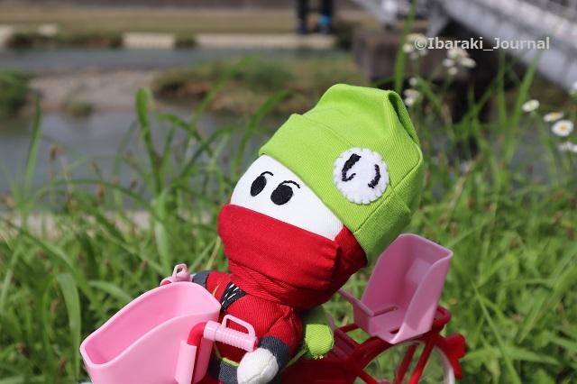 0716千歳橋付近自転車に乗るにんじゃるIMG_3807