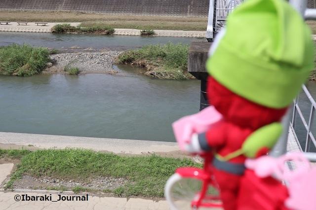 0716千歳橋付近からにんじゃる自転車で安威川IMG_3800