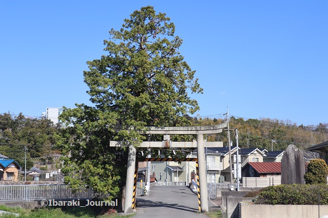 新屋坐天照神社鳥居のほうIMG_2207