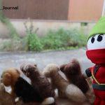 Dカフェの窓でにんじゃるIMG_3923