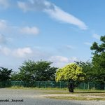 茨木の風景IMG_3707