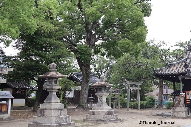 0624井於神社本殿向かって左IMG_3478