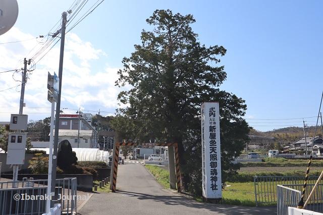 新屋坐天照神社の鳥居から見たところIMG_2211