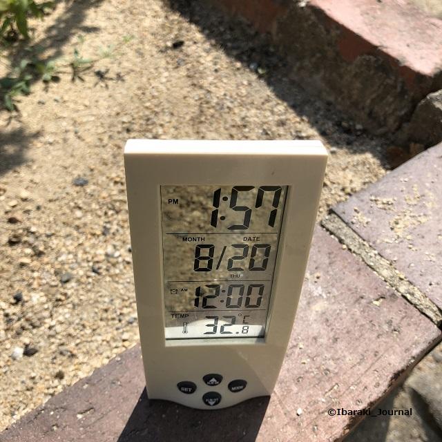 20200820気温1IMG_6016