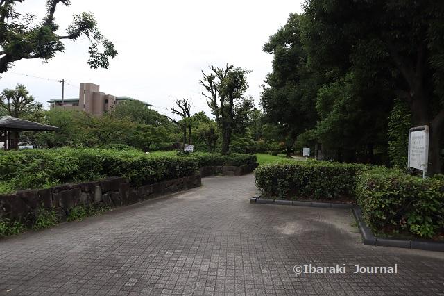 0723沢良宜駅近く梅林のほうIMG_3971