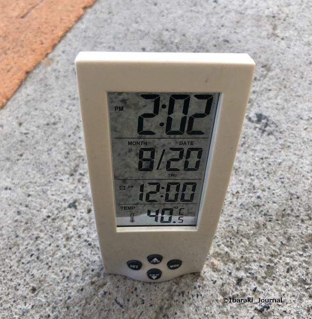 20200820気温4IMG_6019