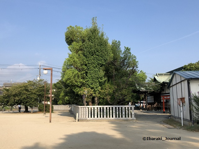 0820-8春日神社のほうIMG_5995