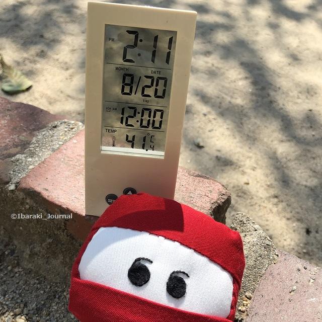 20200820気温7IMG_6023