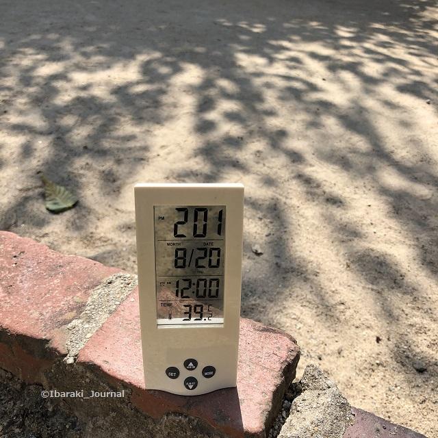 20200820気温3IMG_6018