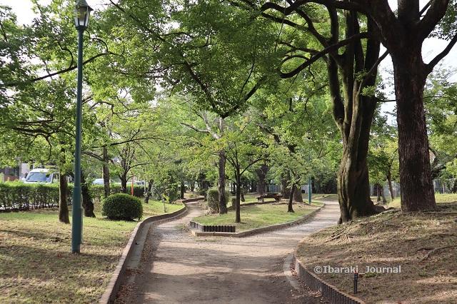 0909-4川端通り沿い元茨木川緑地信号のほう2IMG_4219
