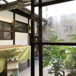 木の香中庭のほうIMG_6543