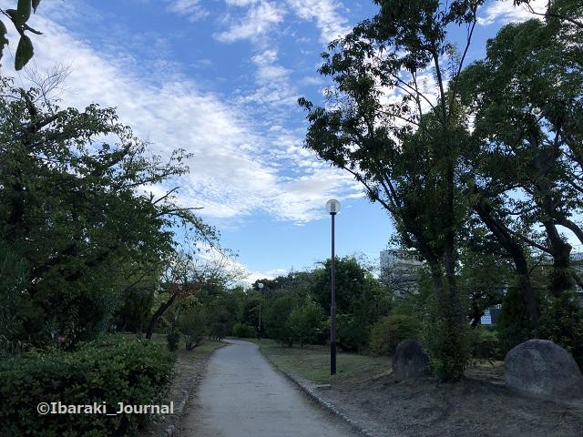 0911桜通り沿い元茨木川緑地風景IMG_6374
